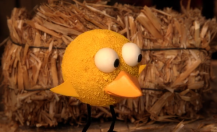 Sesame Workshop – Four Chicks